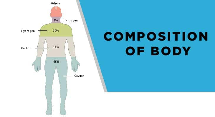 Composition of Body