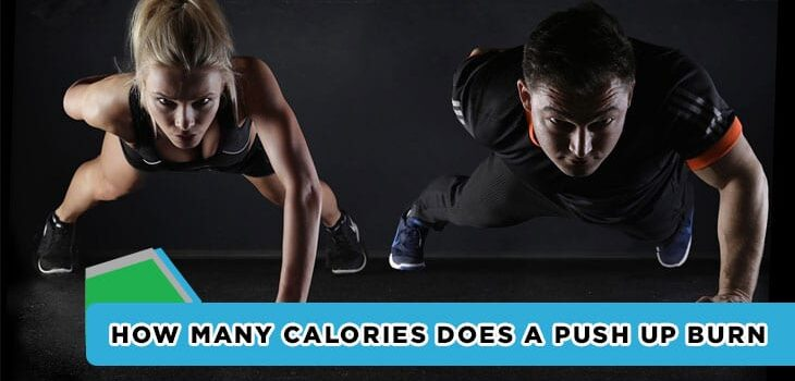 How many calories does a push up burn