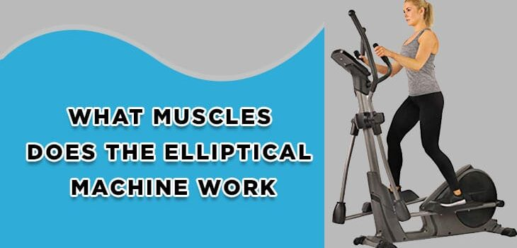 What Muscles Does Elliptical Machine Work