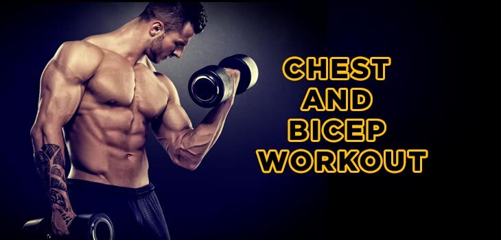 Chest and Bicep Workout Guides