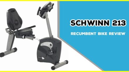 Schwinn 213 Recumbent Bike Review