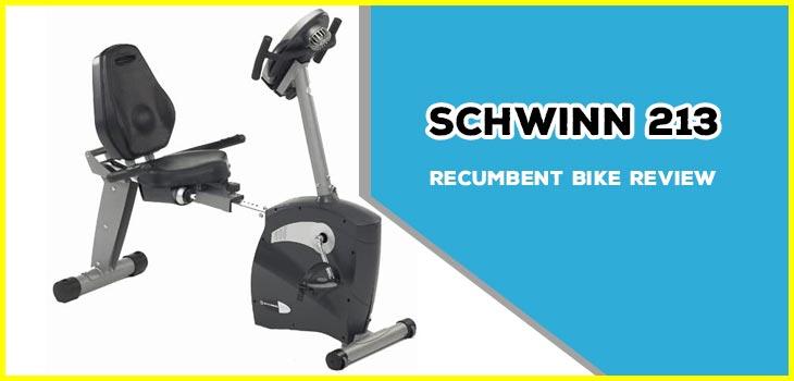 Schwinn 213 Recumbent Bike Review